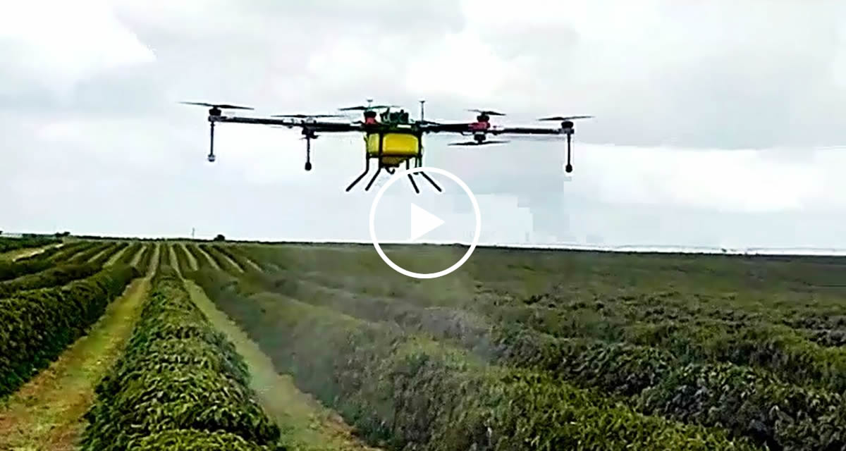 South American coffee farmers appreciate Joyance drones